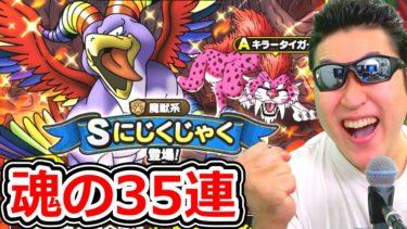 ドラクエタクト ストーリーラスボス戦&魂の35連ガチャ!【DQT実況】