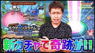 【ドラクエタクト】新ガチャ『Sクイーンスライム&Aスライムブレス』で奇跡が起きてしまった…!!!【ぎこちゃん】