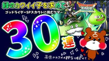 【ドラクエタクト】ゴッドライダーSPスカウト30連!熊吉は今回のガチャで憧れのライムスライムをゲットできるのか!?