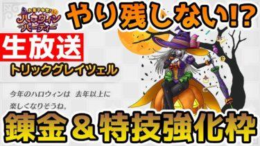 【ドラクエタクト】(Live10/17)新イベントに向けてやり忘れが無いがチェックしよう!!【DQT】