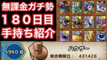 【ドラゴンクエストタクト】プレイ開始から180日目!無課金ガチ勢の手持ち紹介!