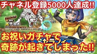 【ドラゴンクエストタクト】祝‼︎チャンネル登録者さん5000人達成記念ガチャ!お祝いガチャで奇跡が起きた!!