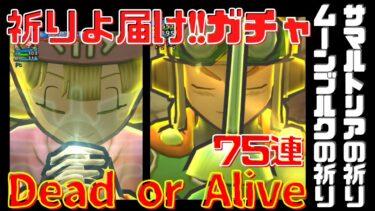 【ドラクエタクト】ガチャ75連!祈る!もう祈るしかない!Dead or Alive さぁどっちだ!?