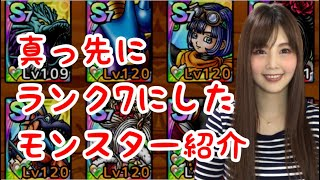 【ドラクエタクト】ランク7にしたモンスター&キャラ紹介【女性ゲーム実況者】